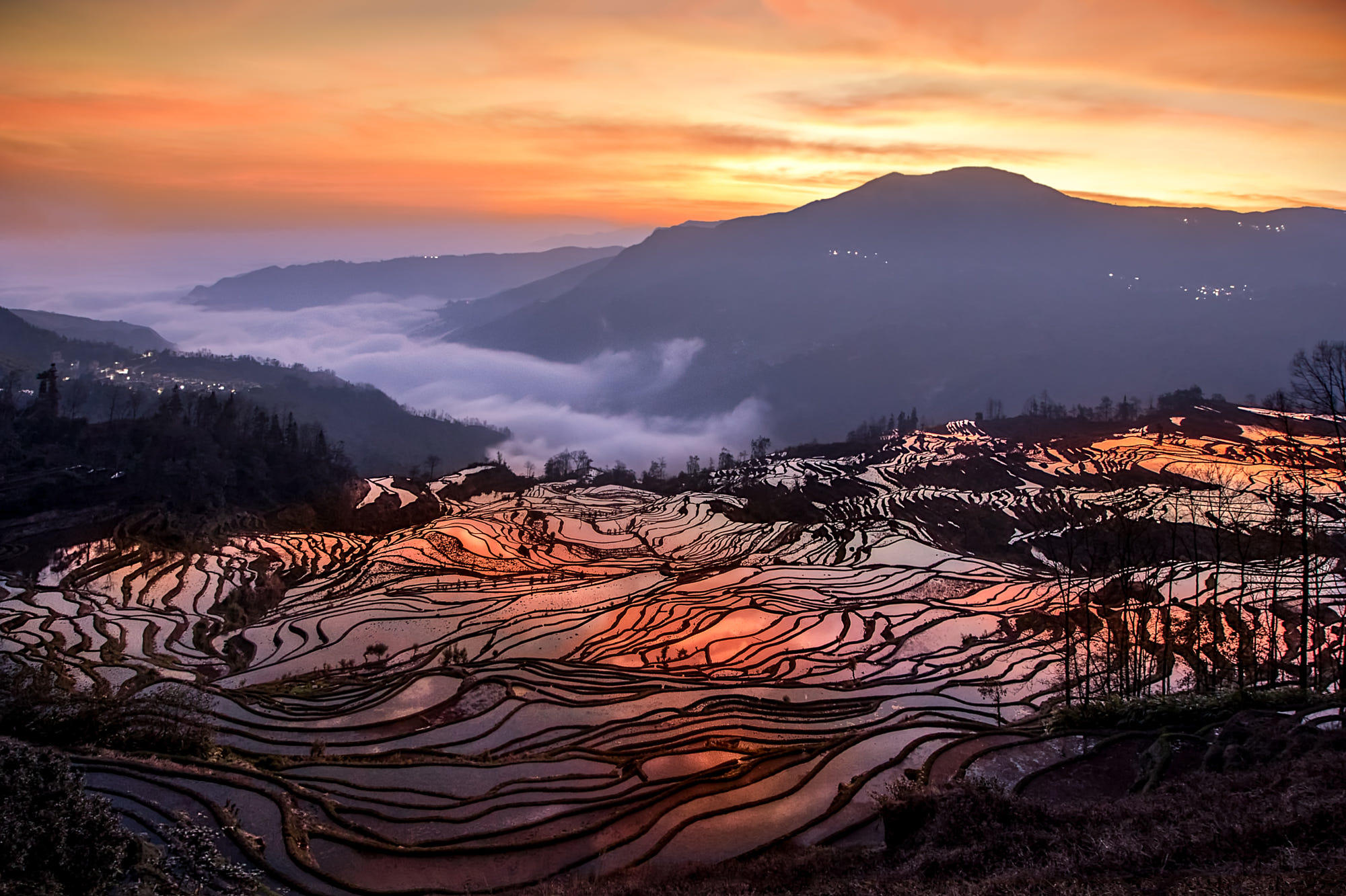 Terraced Rice Fields at Sunset